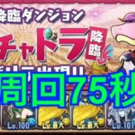 【パズドラ】ガチャドラ75秒周回!パーティ編成と立ち回り 花火より高速!!